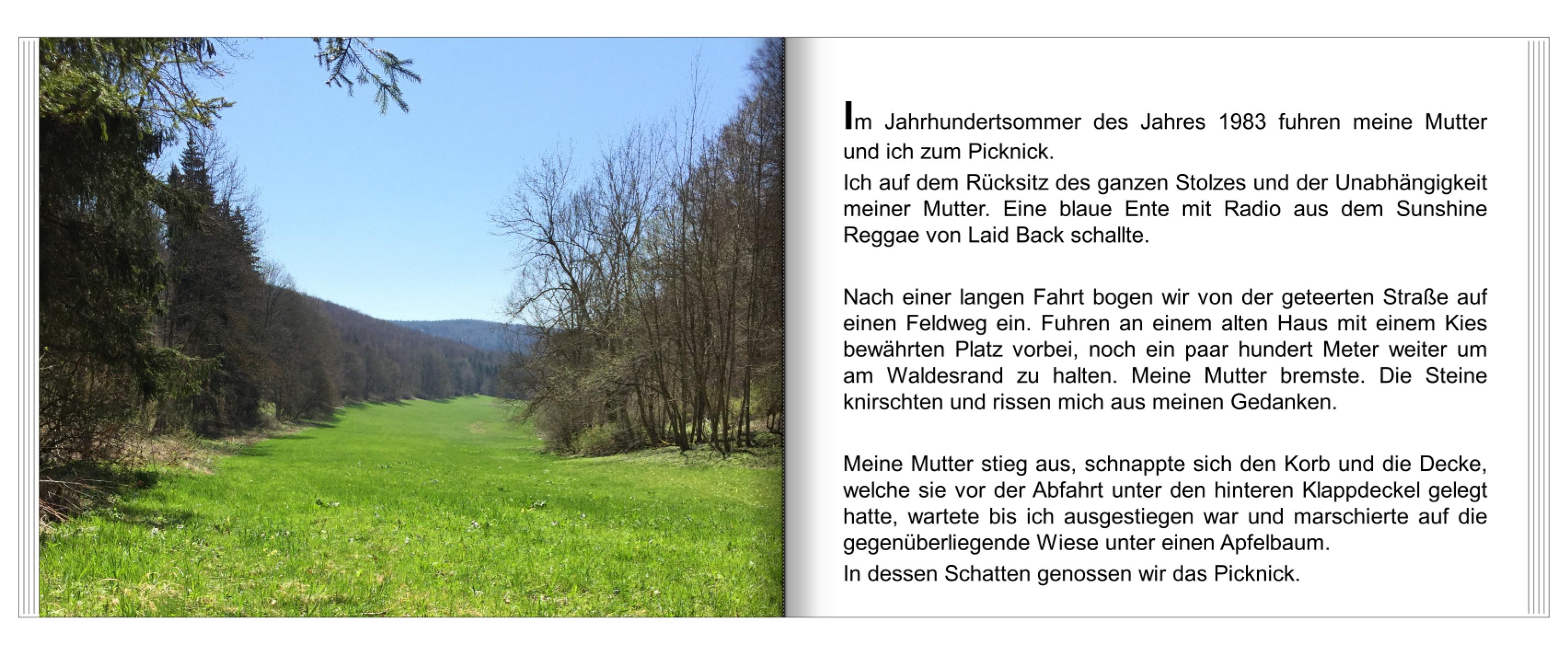 Buch2_4